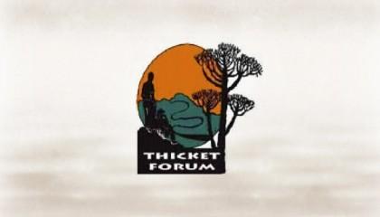 TF2011